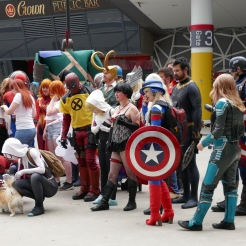 Man's best friend with the Marvel heroes and villians